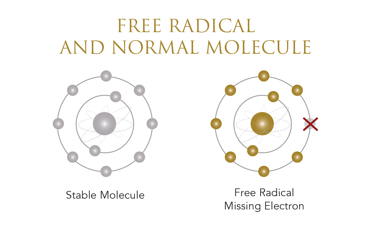 Infographic on free radical versus normal molecule