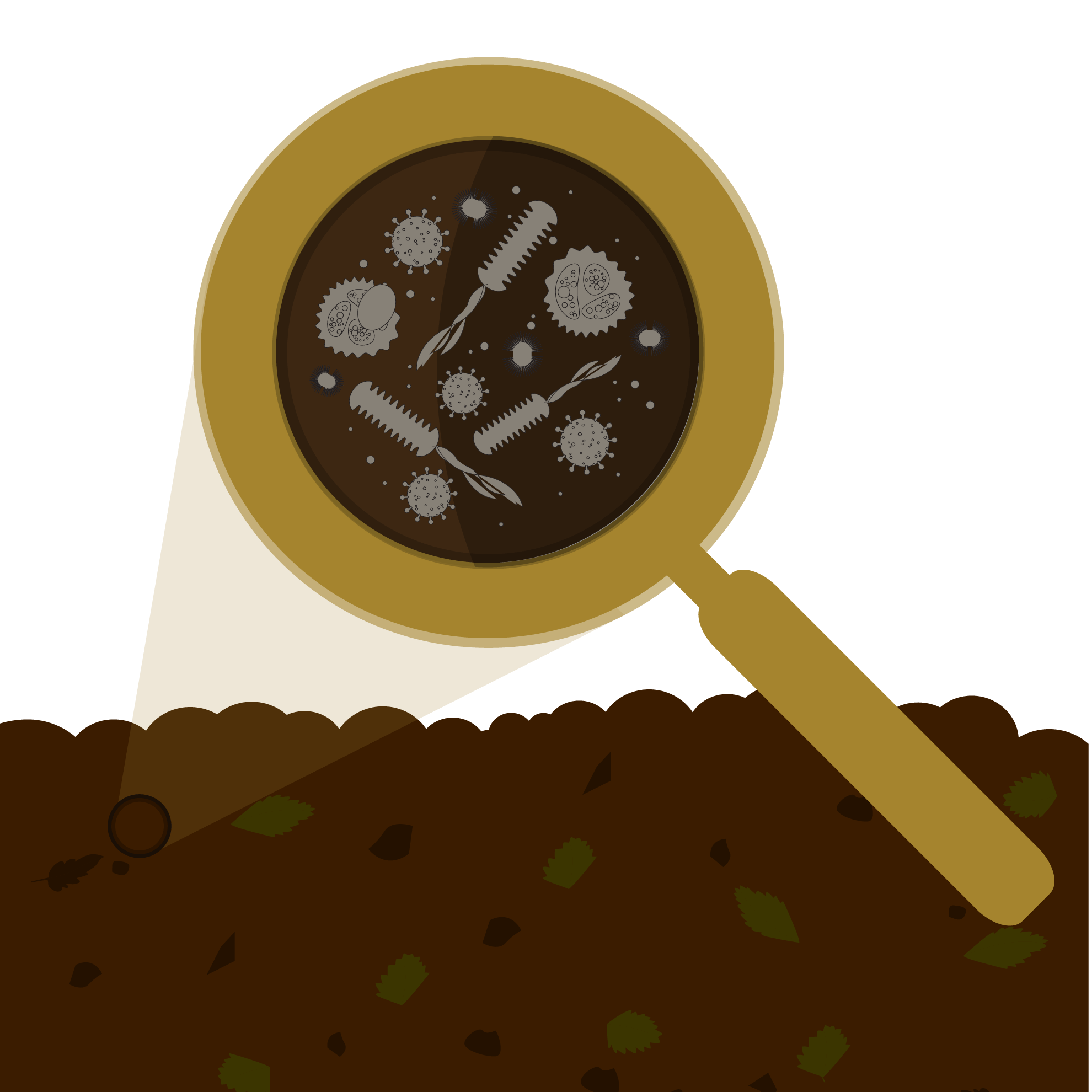 magnifying glass examining bacteria in dirt