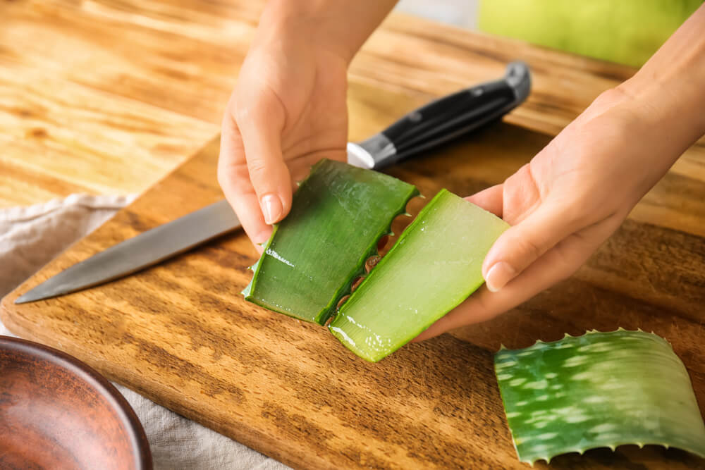 Slicing aloe vera stem with knife