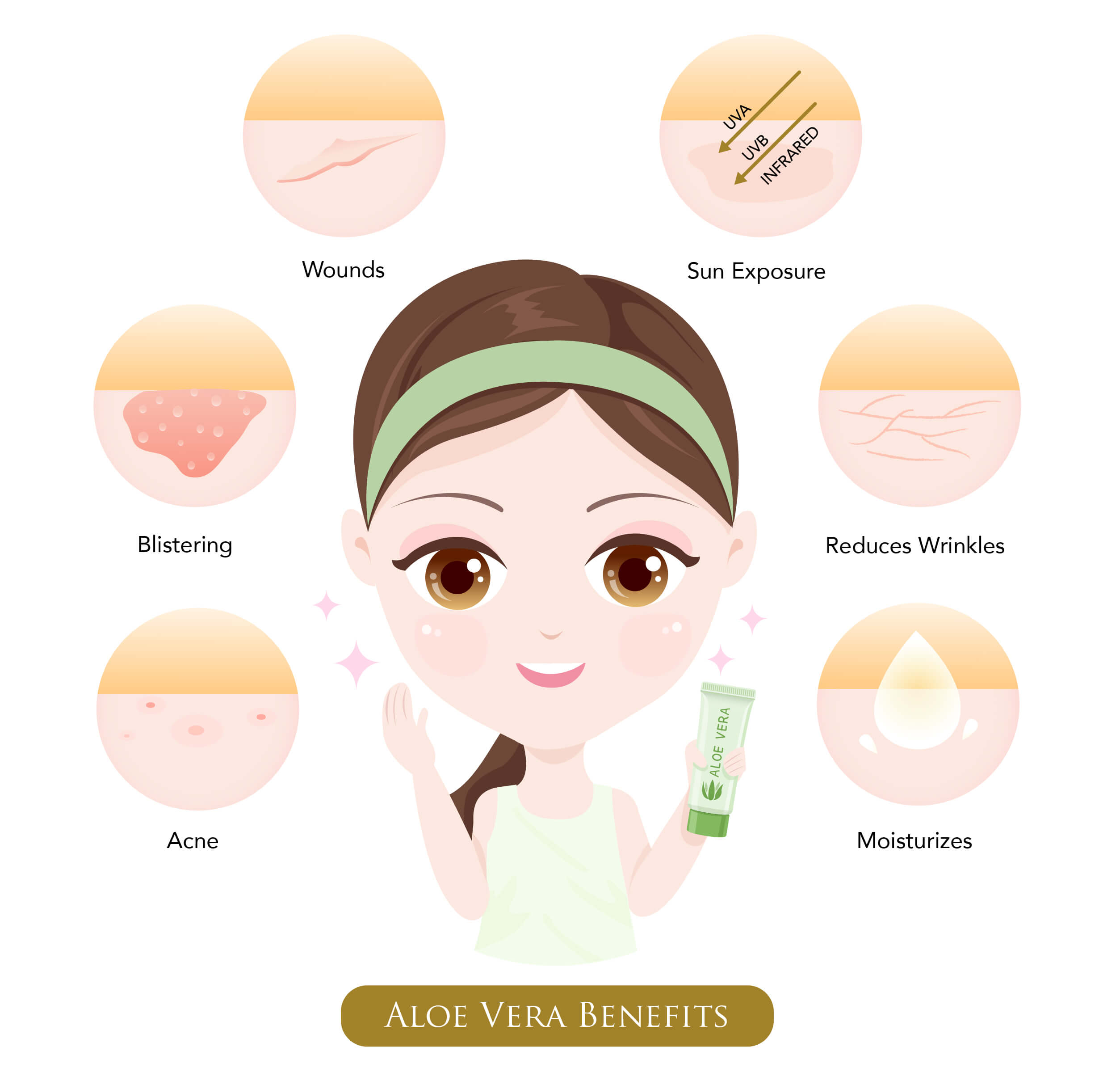 Infographic on the benefits of aloe vera
